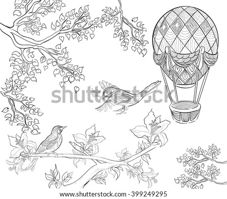 Coloring Book For Adult Birds Air Balloon