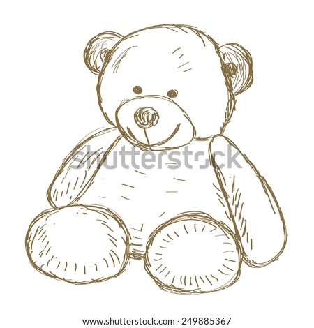 hand drawn isolated teddy bear