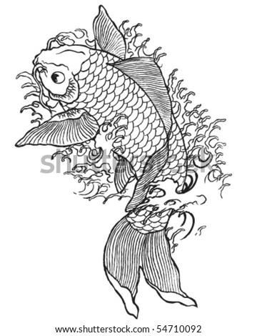 Hand Drawn Koi Fish