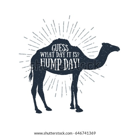 Hand drawn label with textured camel vector illustration and 'Guess what day it is? Hump day!' funny lettering. Foto stock ©