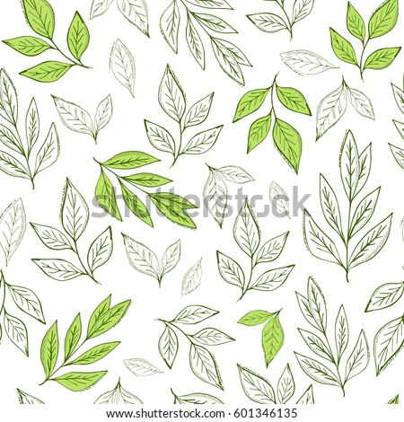 Hand drawn leaf seamless pattern.Tea  vector illustration
