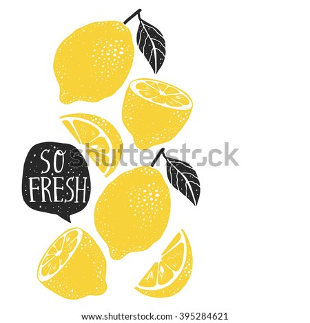 hand drawn lemon  lemon slice