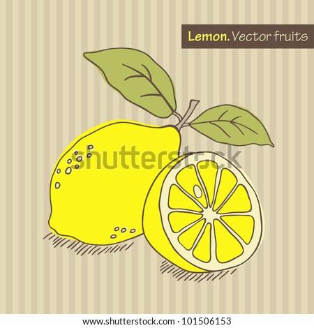 Hand drawn lemon. Vector illustration