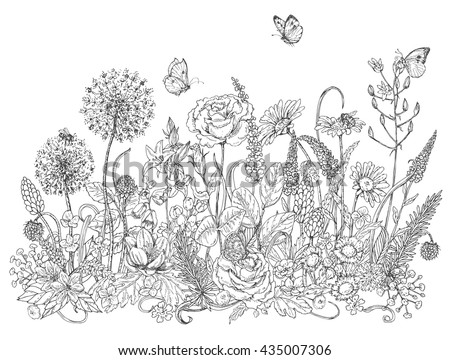 Hand drawn line illustration with wildflowers and insects. Black and white doodle wild flowers, bees and butterflies for coloring. Floral elements for decoration. Vector sketch.