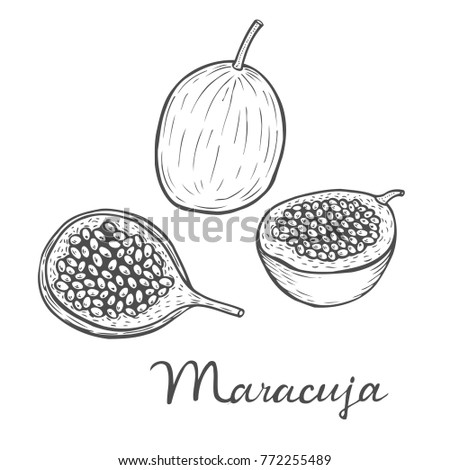 Hand drawn Maracuja passion fruit, bunch. Organic nutrition healthy food. Engraved exotical vintage retro vector maracuja illustration.