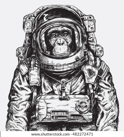 hand drawn monkey astronaut
