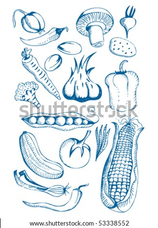 Hand Drawn natural food