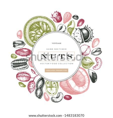 Hand drawn nut wreath design. With vector pecan, macadamia, hazelnut,walnut, almond, pistachio, chestnut, peanut, brazil nut, hazelnut, coconut and cashew. Healthy food vector template Сток-фото ©