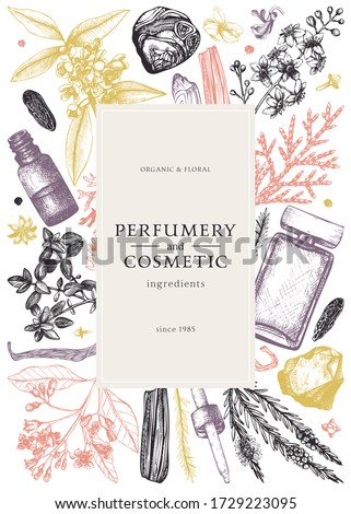 Hand drawn perfumery and cosmetics ingredients flyer. Decorative background with vintage aromatic plants, fruits, spices, herbs for perfumery. Organic cosmetics design template. Aromatic plants banner