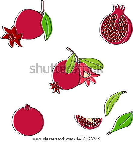 Hand drawn pomegranates collection. vector style collection.