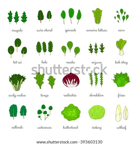 how to cook chinese green leafy vegetables