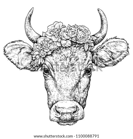 Hand drawn portrait of cute Cow with a wreath on head. Vector illustration isolated on white