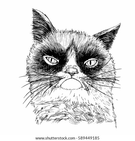hand drawn portrait of grumpy