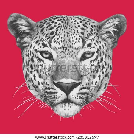 hand drawn portrait of leopard
