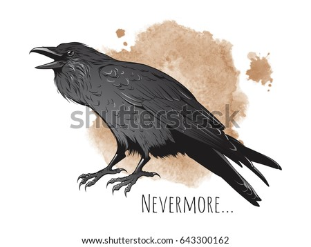 hand drawn raven on sepia