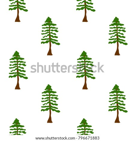 hand drawn redwood tree forest
