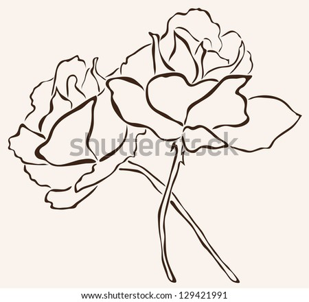 hand drawn rose flowers for your design