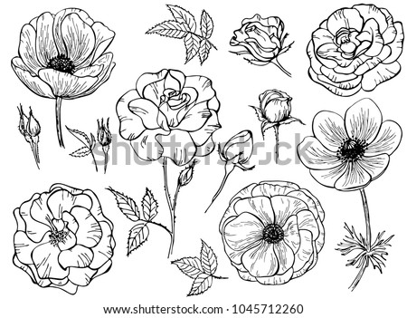 Books And Rose - Download Free Vector Art, Stock Graphics & Images