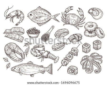 Hand drawn seafood. Natural oyster squid, caviar. Japanese meal ingredients. Isolated sketch sushi salmon, roast prawn vector illustration. Ocean and seafood, restaurant menu food collection