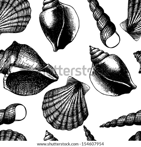 Hand drawn seamless pattern with sea shell isolated on white. Vintage background with engraving elements. Vector illustration.