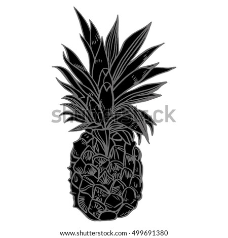 hand drawn set illustrations of ripe pineapples exotic tropical