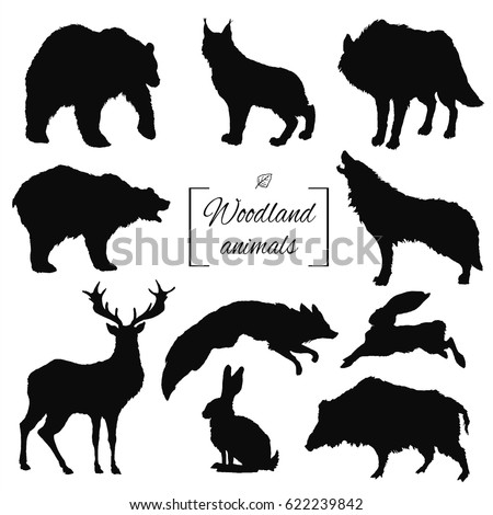 hand drawn silhouette isolated woodland forest animals: bear, deer, lynx, wolf, fox, aper, hare