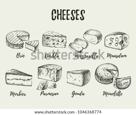 Hand drawn sketch cheese types set. Vector illustration of natural foods