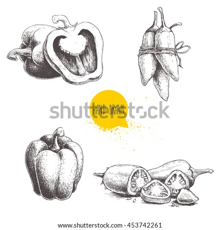 Shutterstock Hand drawn sketch collection of different types of pepper. Bell sweet peppers composition, sliced hot chili peppers and jalapeno peppers bunch. Fresh vegetables set isolated on white background.