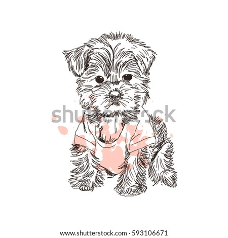 hand drawn sketch little puppy