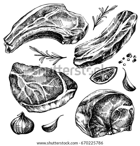 Hand drawn sketch meat set. detailed ink food illustration. Steak meat hand drawing with pepper and rosemary, lemon, garlic.