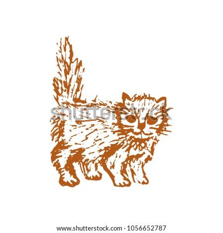 hand drawn sketch of cat kitten