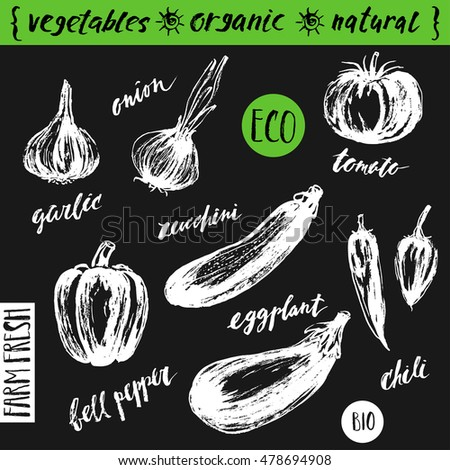 Hand drawn sketch of vegetables with lettering names. Organic farm product design. Zucchini, tomato, pepper, eggplant, garlic, onion, chili. #478694908