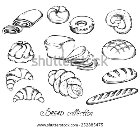 Bread Rolls Drawing Drawn Sketch Set of Breads