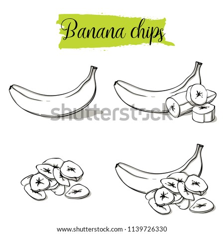Hand drawn sketch style Banana set. Single, group fruits, banana chips, slices. Organic food, vector doodle illustrations collection isolated on white background.