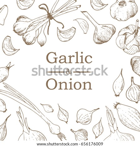 Hand drawn sketch style garlic and onions on white background.
