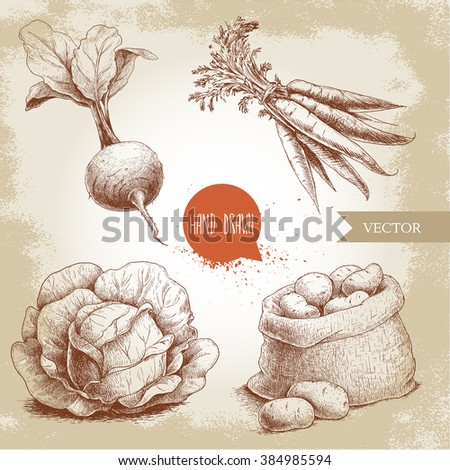 Hand drawn sketch style vegetables set. Cabbage, beet root with leafs, sack with potatoes and bunch of carrot. Farm fresh food on grunge vintage background.