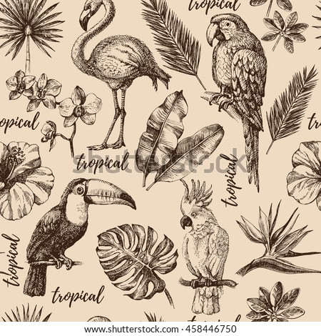 Hand drawn sketch tropical paradise plants and birds vintage seamless pattern. Vector illustration background