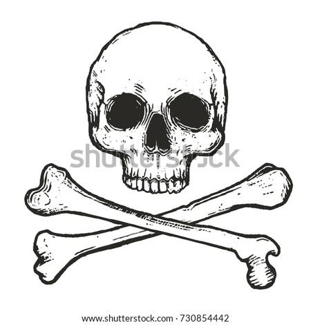 hand drawn skull and crossbones