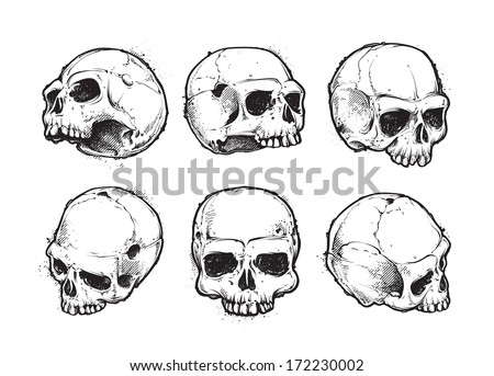 hand drawn skulls vector set