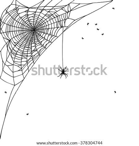 Hand drawn spider web