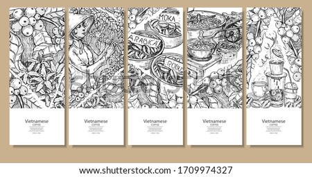 Hand drawn 5 steps of Vietnamse coffee process in brown colors, young coffee sprout to hot coffee drink, sketch style on white background. Sketch drawing art for coffee packaging label.Use by Pen ink.