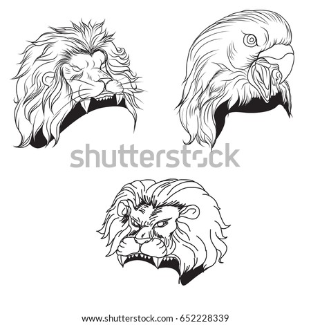 hand drawn the head of predator