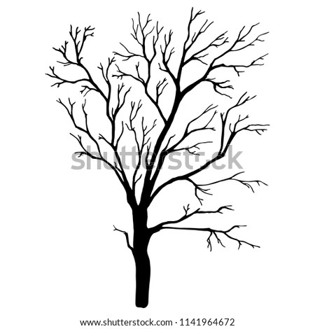 hand drawn tree isolated on
