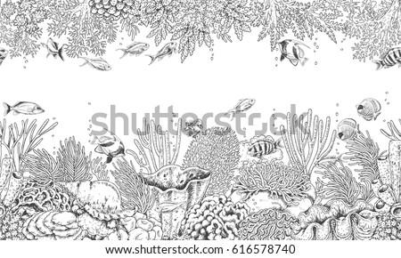 hand drawn underwater natural