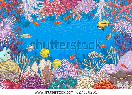 hand drawn underwater natural