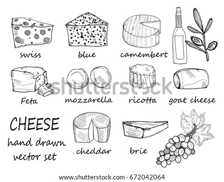 Hand drawn various sorts of cheese. Graphic vector set. All elements are isolated