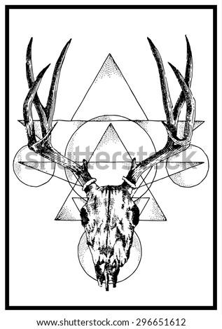 Hand Drawn Vector Deer Horn Skull Illustration Page