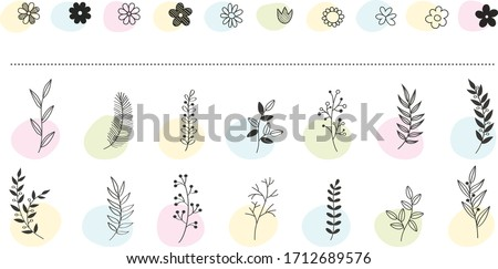 Hand drawn vector floral elements. Branches and leaves colors. Herbs and plants collection. Vintage botanical illustrations. Stock photo ©