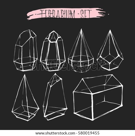 Terrarium Free Vector Art 6 Free Downloads