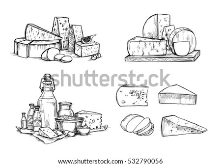 Hand drawn vector illustration. Cheese and milk set (mozzarella, gouda, parmesan, maasdam). Design elements in sketch style. Perfect for packaging, menu, cards, blogs